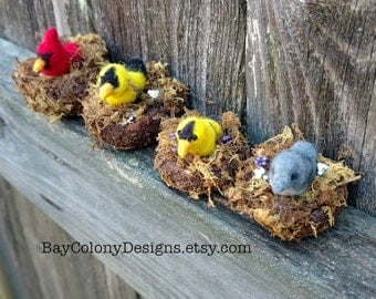 Needle-Felted Wildlife Birds in a Tiny Nest  - READY TO SHIP-  Free shipping to cont. U.S.A.