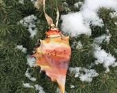 Christmas Ornament-Lampwork Seashell Ornament-Glass Conch Sea Shell-Handblown Ornament-Sea Shell Ornament-Christmas Tree Ornament