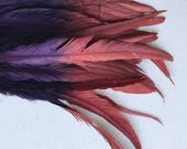 CARNIVAL COQUE TAIL / Two Tone, ombre, Plum and Brick Red  / C - 04