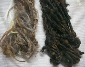 Handspun Tailspun Shaggy Swedish Native Breed Wool Locks in Natural Colors of Brown Grey: 2 Skeins of Art Yarn by KnoxFarmFiber for Weaving