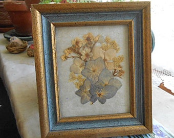 "PRESSED HYDRANGEA FLOWERS Framed Picture Queen Anne's Lace Forget Me Nots Detailed Petals Organic Grown, 5.5"" x 6.5"" Wood Mini Wall Hanger"