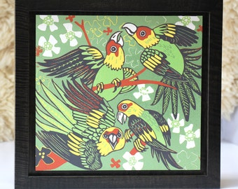 Carolina Parakeet woodcut framed in solid tiger maple wood allow 4 weeks for delivery