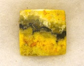 23.5 ct ...  Bumble bee Jasper Cabochon ...  24 x 24 x 4 mm