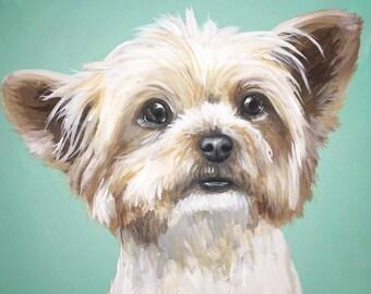 custom painted pet portrait sample canvas size 8x10