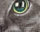 custom order of a cat art print