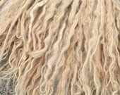 Long Suri Alpaca Locks, 11 Inches, Beige, Washed and Conditioned, Chantilly Lace