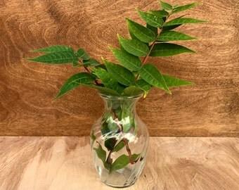 Vintage Vase // Clear Glass Vase with Striped Pattern // Wedding Decor // Bridal Decor // Home Decor