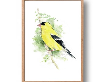 Yellow goldfinch watercolor print, Eastern goldfinch print, Bird art,  Bright yellow, green, wild canary watercolor, New Jersy state bird