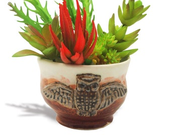 mini planter with owl embelishment Anita Reay hand crafted one of a kind rustic planter owl bowl pot plant suit herbs bonsai