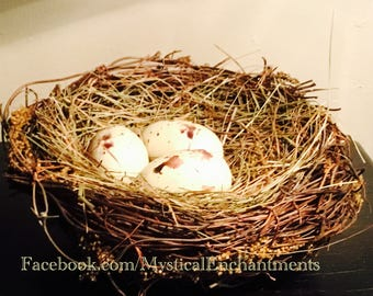 """Spring Birds nest with cream spotted eggs- 5 1/2"""""""