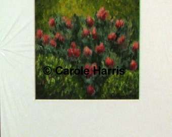 Azalea Buds Oil painting on paper Carole Harris