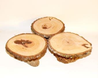 10 mini cupcake stands ~  4-5 inch Rustic Tree Slice Dessert stand ~ wedding ~ Baby shower ~ Graduation Party ~  Reunions ~ Baptismal