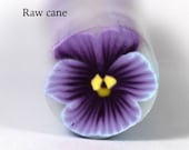 Raw Polymer Clay Pansy Cane