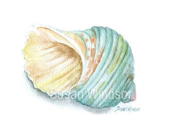 Green Turbo Seashell Watercolor Print - 11 x 14 - Turbin Shell Beach Art Ocean Shell Summer Beach Fine Art Reproduction