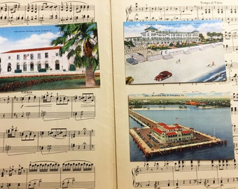 Vintage Florida Postcards Set of 3 Linen Unused Daytona St. Petersburg 1940s Collector Ephemera Paper