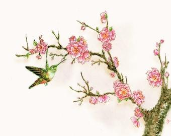 Hummingbird with plum blossoms- large print