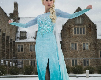 Adult Elsa Frozen Costume, Custom Made- Couture