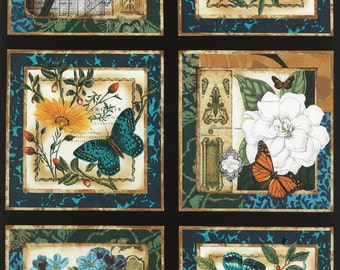 Modern Curiosity Large Squares Panel  C4453 - By Sue Schlaback for Timeless Treasures Fabric - By the Yard