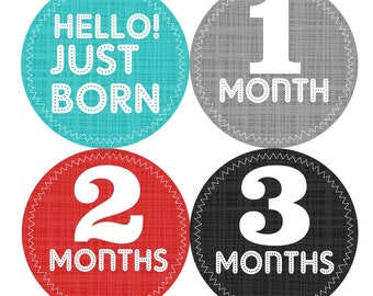 1st Year Baby Month Stickers, PLUS Just Born Sticker, Baby Boy Bodysuit Stickers, Monthly Milestone Stickers, Grey Black Red Teal 040B