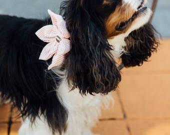 Preppy Football Orange Seersucker Girl Dog Flower Bow Tie Collar, Tennessee Vols