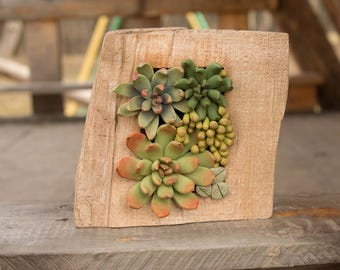 Green Succulent Decor Decoration Wood Frame Base Basis Planted Succulents Cactus Home Decor Accessory Housewarming Birthday Gift