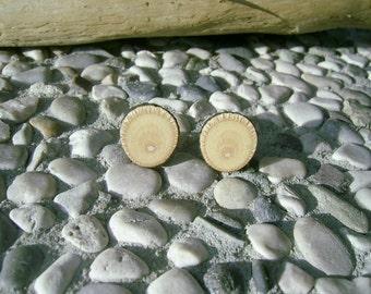 Wooden STUD Earrings From LINDEN Tree Branch