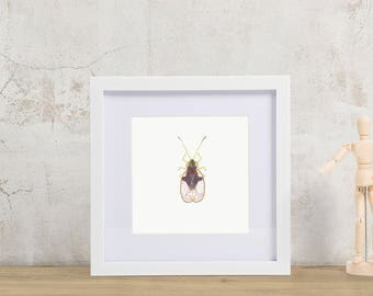 8 by 8 Colorful Rainbow Insect Illustration Art Print