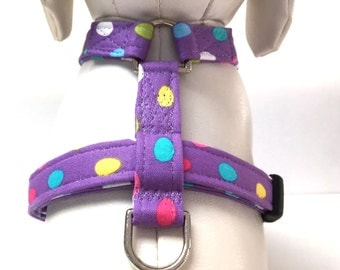 Dog Harness- No Eggs About It