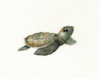 Green Baby Loggerhead Turtle, Watercolor Print, turtle watercolor, turtle print, turtle art, watercolor