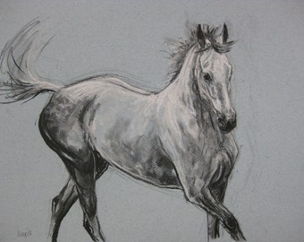 Original horse art equine art energy and movement equine horse charcoal and chalk movement art drawing 'Playtime II' by H Irvine
