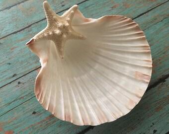Seashell jewelry holder, Beach wedding ring dish, sea shell ring dish, starfish jewelry holder