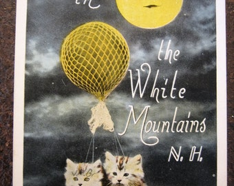 White Mountains, N.H. Vintage Post Card