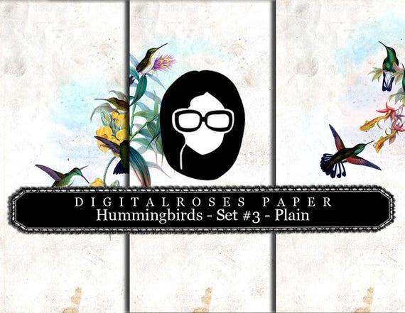 Rose Paper Digital - Hummingbirds Set #3 Plain - 3 Pg Instant Download - digital rose paper, floral digital paper, digital collage