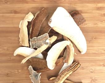 Dried mushroom tea, wood mushroom, dried mushroom wild harvested, reishi, birch polypore, turkey tails, artist's conk, foraged, immunity
