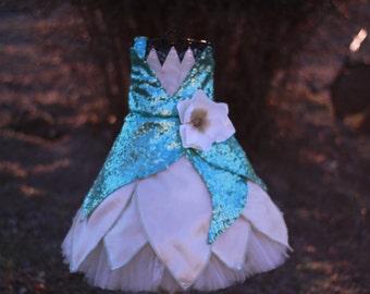 Tiana, Disney's Princess and the Frog, Princess dress, Pageant Dress, Tiana Costume
