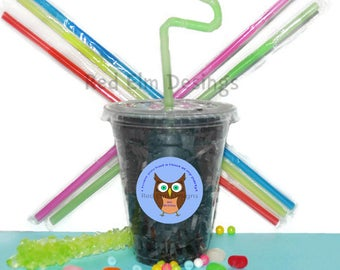 Owl Party Cups, Owl Cups, Kids Birthday Party Cups, 20 Cups, Owl Kids Party Cups, Straws and Lids, 12 Ounce Cups