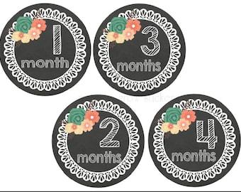 Baby Month Stickers Milestone Stickers Chalkboard Baby Stickers Monthly Baby Stickers Month Stickers Baby Shower Gift