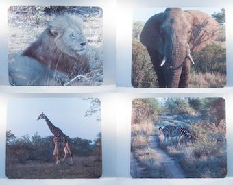 Mousepad, African Animals Design, Office Décor, Lion,Elephant,Giraffe, Zebra, Photograph, Artistic, Office Accessory