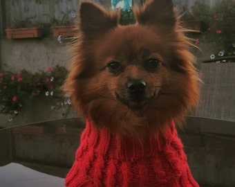 red cable knitt dog jumperSALE NOW ON!!!!!