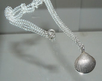 Solid Silver Shell Necklace