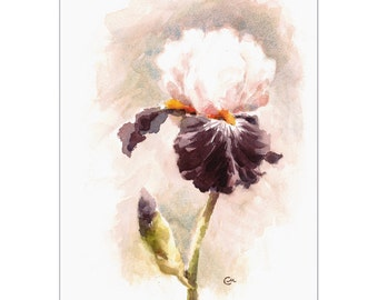 Iris - Original Watercolor Painting 9 x 12 inches Mother's Day Flowers