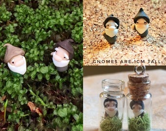 Tiny Terrarium with Tiny Gnome