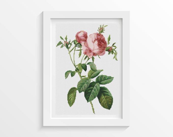 Cross Stitch Pattern PDF, Embroidery Chart, Art Cross Stitch, Rose Cross Stitch, Rosa Centifolia Foliacea by Pierre-Joseph Redouté (REDOU01)
