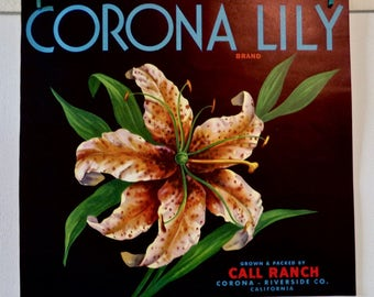 Vintage 1930's - 1950's Fruit Crate Label  - Corona Lily from Call Ranch