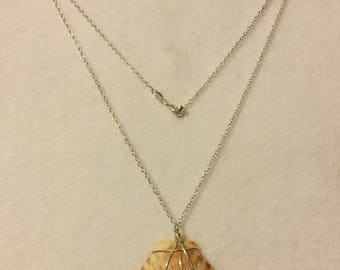 """Florida Seashell wrapped in Sterling Silver Wire on a 20"""" Sterling Silver Chain"""