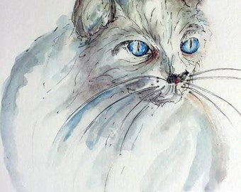 Watercolor white Cat, Blue Eyes cat, Limited Edition Art Print, Watercolor cat painting, blue eyed white cat painting, Cat illustration