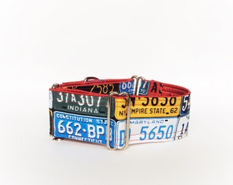 On the road again martingale collar (dog collar, greyhound martingale license plates car USA highway travels colorful )