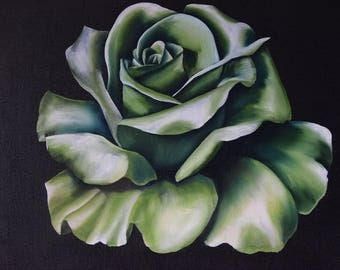 Green cabbage rose - Original Oil Painting
