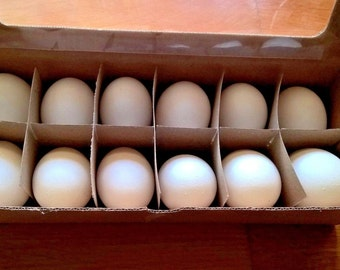 Real Hen Eggs Empty - For Spring Decoration - Natural Color - Box of 12