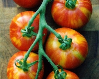 VTH) TIGERELLA TOMATO~Seeds!!!~~~~~~Lovely Mid-Sized Tomatoes!